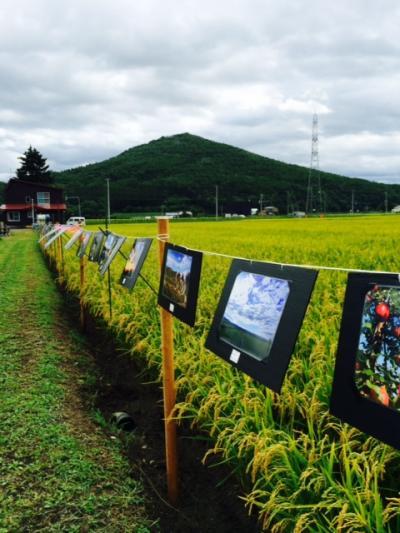 2014.8.25田んぼで写真展