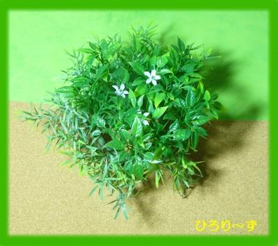 グリーン 10