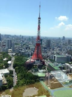 芝剣道部懇親会東京タワー