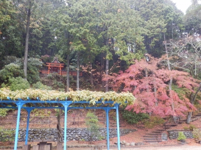 高野山104