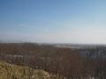 2月の湿原