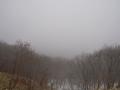3月の釧路湿原2