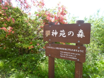 御岳山20160530