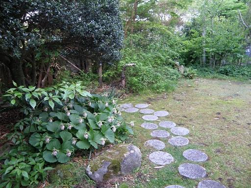 itousan5174.jpg