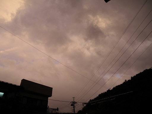 taifu8102.jpg