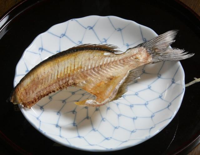 IMG_0233 タナゴ中骨(640x496)