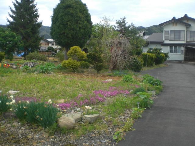 新すくすくの木の庭園