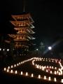 燈花会 興福寺