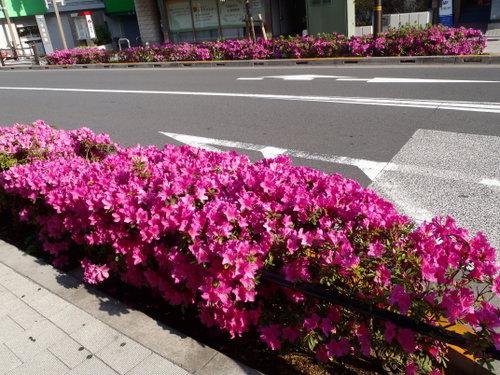 2014_0502_160643-P5020004-001.jpg
