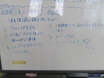 IMG_6724.jpg