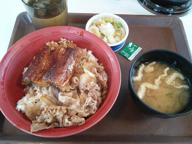 すき家鰻牛丼