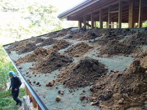 屋根に上げた土