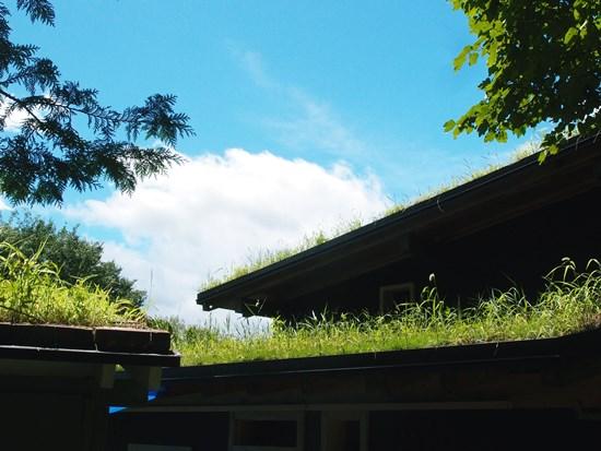 草屋根と空と雲