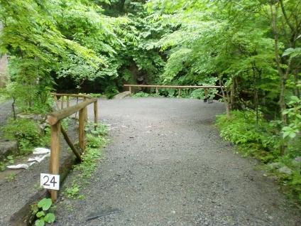toyanosawa014_R.jpg