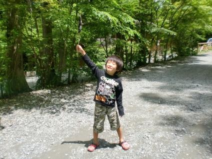 toyanosawa023_R.jpg