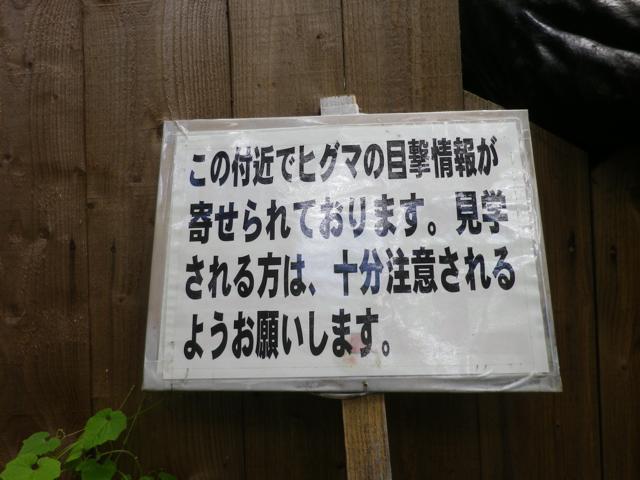th_IMGP1243.jpg