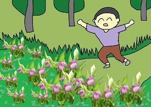 アツモリソウはカッコ花