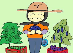 野菜最盛期