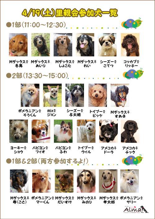 0419参加犬