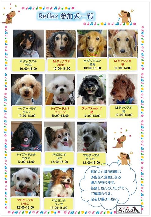 20140719巣鴨里親会参加犬一覧-2 (2)