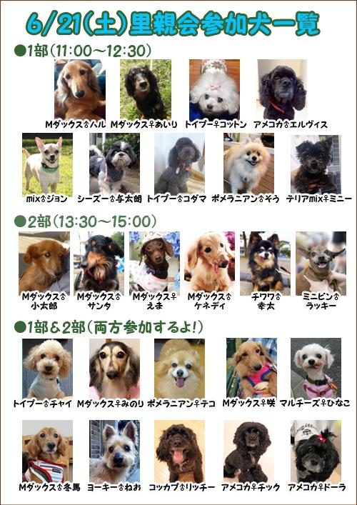 poster2_201406112057064a6.jpg