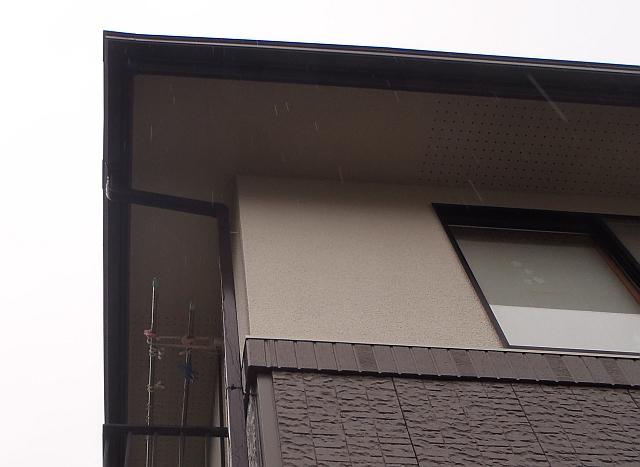 P8091107-2.jpg