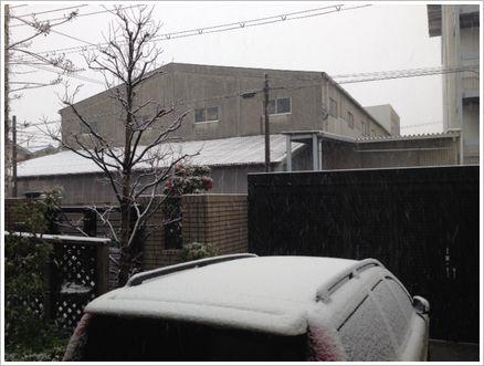 降ってる雪が見えますか?