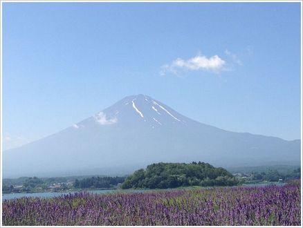 やっぱり日本一の富士山です
