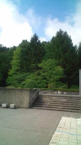 博物館の裏山