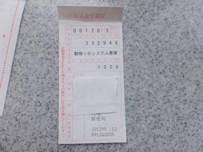 yokoS0130169.jpg