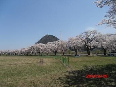 中川原桜9