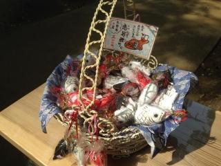 麻賀多神社 恋(鯉)みくじ