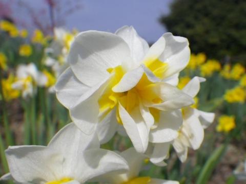 14-03-03-009.jpg