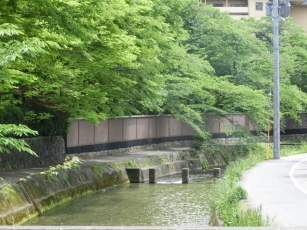14.05.19 京都 010