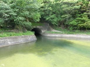 14.05.19 京都 024