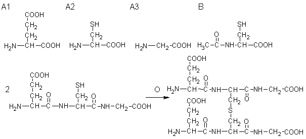 kyodai_2014_chem_a4_1.png
