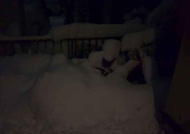 2014/2/14の大雪