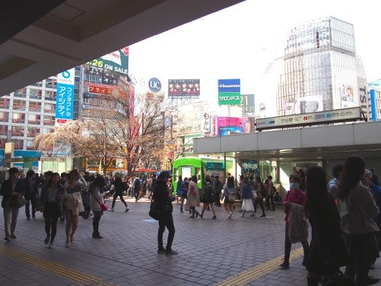 201432902.jpg