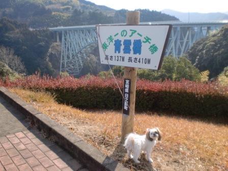 みこと青雲橋