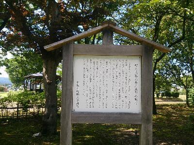 雄物川中央公園5
