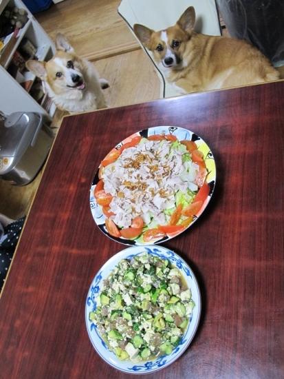 ブタの冷しゃぶサラダ、マグロキュウリ豆腐アボカドの醤油和え