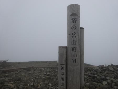 DSC02273.jpg