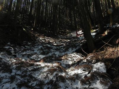 登山道内の残雪