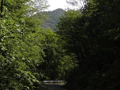 西御荷鉾山