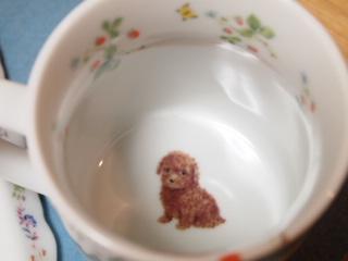 カップの底にはトイプーがいます。