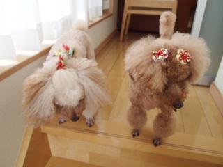 ベッキーと杏ちゃんの髪型。