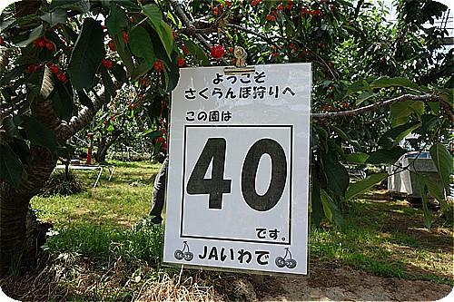 6S0836.jpg