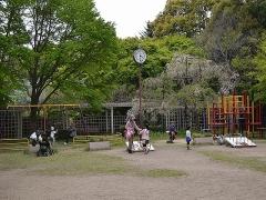 DSC_0045.jpg