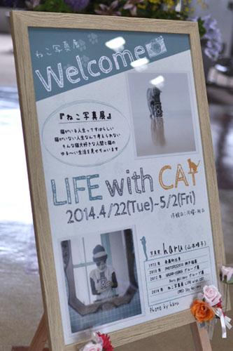 140520_LwC_nagi0.jpg