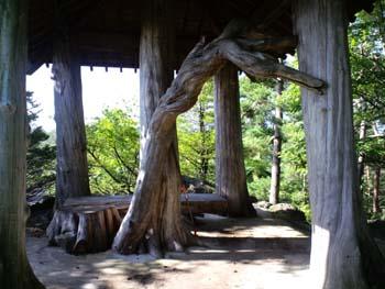 小林造園絶景一階
